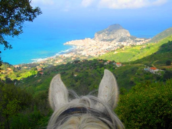 Horse riding in the hill